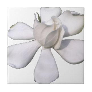 White Gardenia Bud 201711g Ceramic Tile