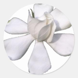 White Gardenia Bud 201711g Classic Round Sticker