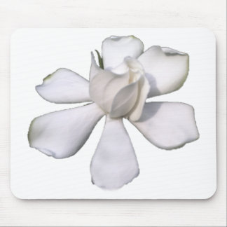 White Gardenia Bud 201711g Mouse Pad
