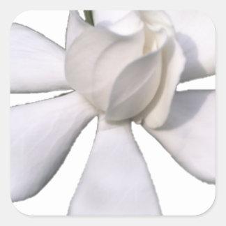 White Gardenia Bud 201711g Square Sticker