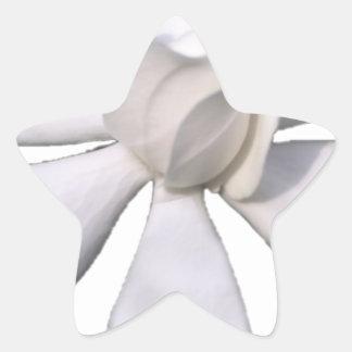 White Gardenia Bud 201711g Star Sticker