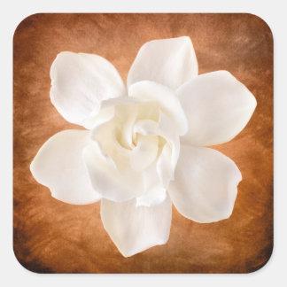 White Gardenia Flower Blossom Floral Square Sticker