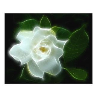 White Gardenia Flower Plant Flyer