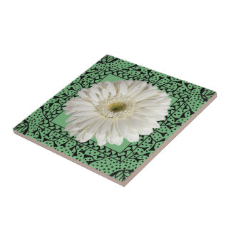 White Gerbera Daisy in Hand-drawn Frame Tile