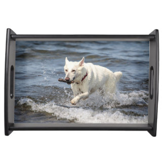 White German Shepard on Lake George Serving Tray