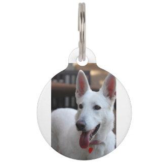 white german shepherd pet name tag