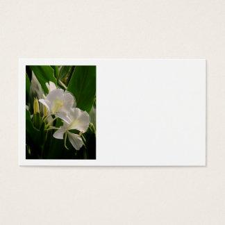 White Ginger Business Card