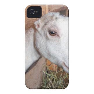 White Goat Case-Mate iPhone 4 Case