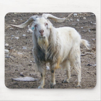 White Goat Standing Mouse Pad
