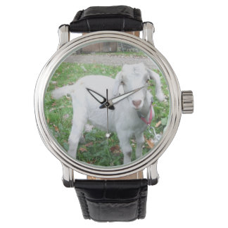 White Goat Watch
