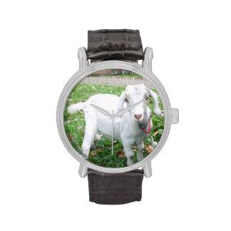White Goat Watch