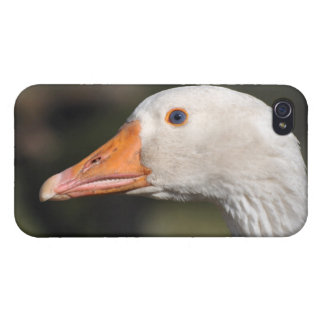 White goose cover for iPhone 4