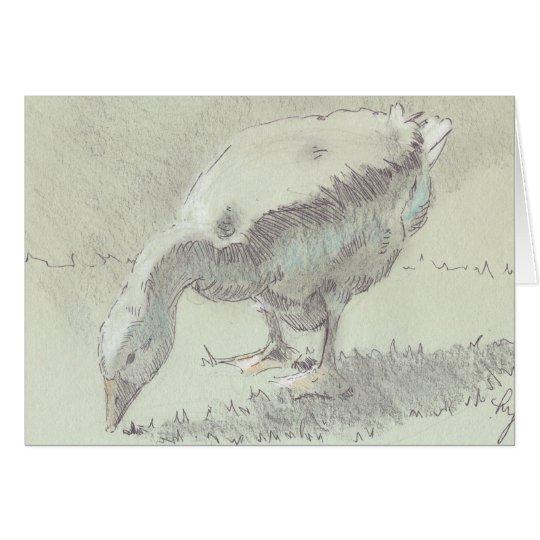 White Goose drawing Card