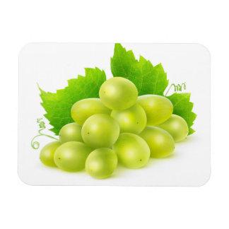 White grapes rectangular photo magnet