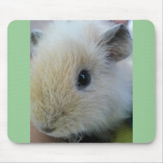 White Guinea Pig With Pretty Green Edges Mouse Pad