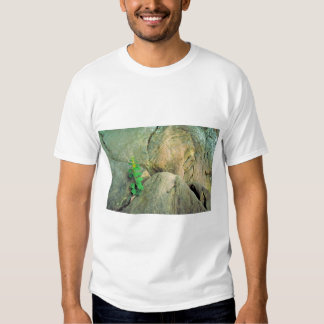 White-haired Goldenrod T-shirts