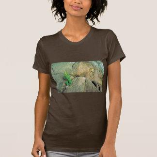 White-haired Goldenrod T Shirt