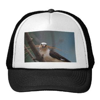 White-headed Buffalo Weaver Cap