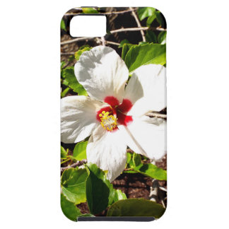 White Hibiscus Case For The iPhone 5