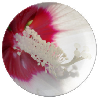 White Hibiscus Flower Decorative Porcelain Plate