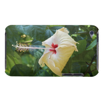 White Hibiscus Rosa Sinensis China Rose Mallow Barely There iPod Case