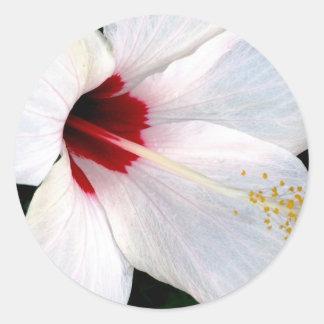 White Hibiscus Round Sticker