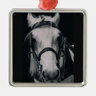 White Horse Face Square Ornaments