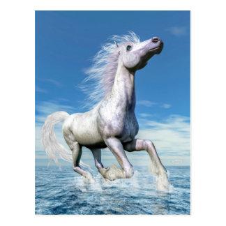 White horse freedom - 3D render Postcard