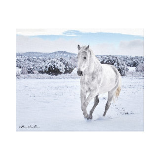 White Horse Galloping in the Snow Canvas Print