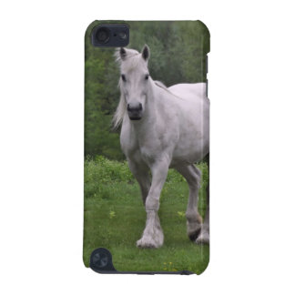 White Horse In Field iPod Touch (5th Generation) Case