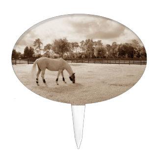 white horse in pasture grazing sepia cake topper