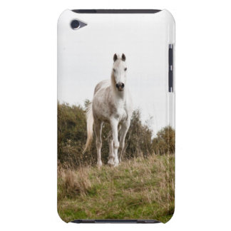 White horse iPod Case-Mate case