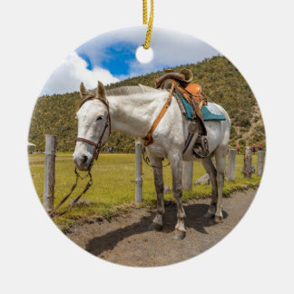 White Horse Tied Up at Cotopaxi National Park Ceramic Ornament