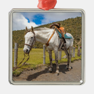 White Horse Tied Up at Cotopaxi National Park Metal Ornament