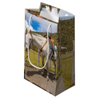 White Horse Tied Up at Cotopaxi National Park Small Gift Bag