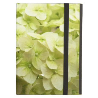 White Hydrangea flower background Cover For iPad Air
