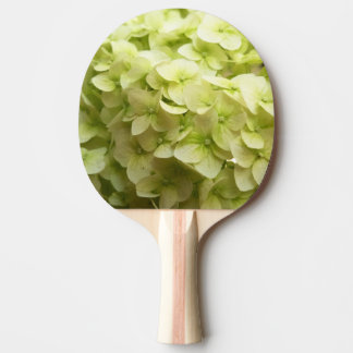 White Hydrangea flower background Ping Pong Paddle