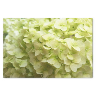 White Hydrangea flower background Tissue Paper