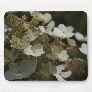 White Hydrangea Mousepads