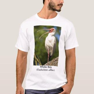 White Ibis, (Eudocimus... T-Shirt