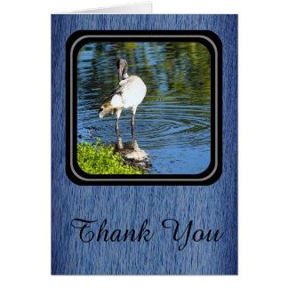 White Ibis Thank You card - ocean blue