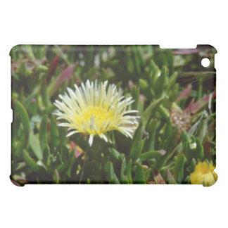 White Ice Plant Blossom flowers iPad Mini Cases