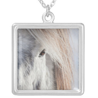 White Icelandic Horse face, Iceland Silver Plated Necklace