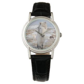 White Icelandic Horse, Iceland Wrist Watches