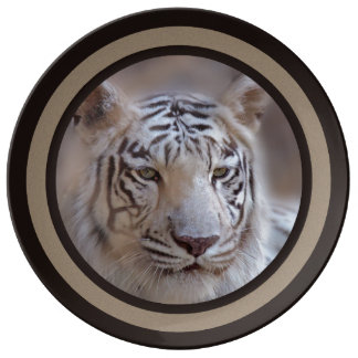 White Indian Bengal Tiger Porcelain Plate