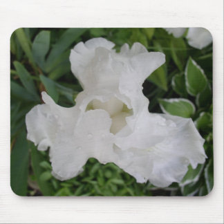 White Iris Mouse Pad
