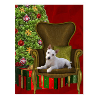 White Jack Russell Christmas Postcard