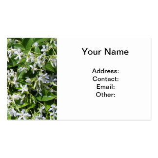 White Jasmine Flowers Business Card Template
