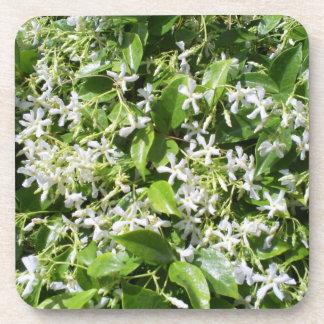 White Jasmine Flowers Beverage Coaster