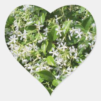 White Jasmine Flowers Stickers